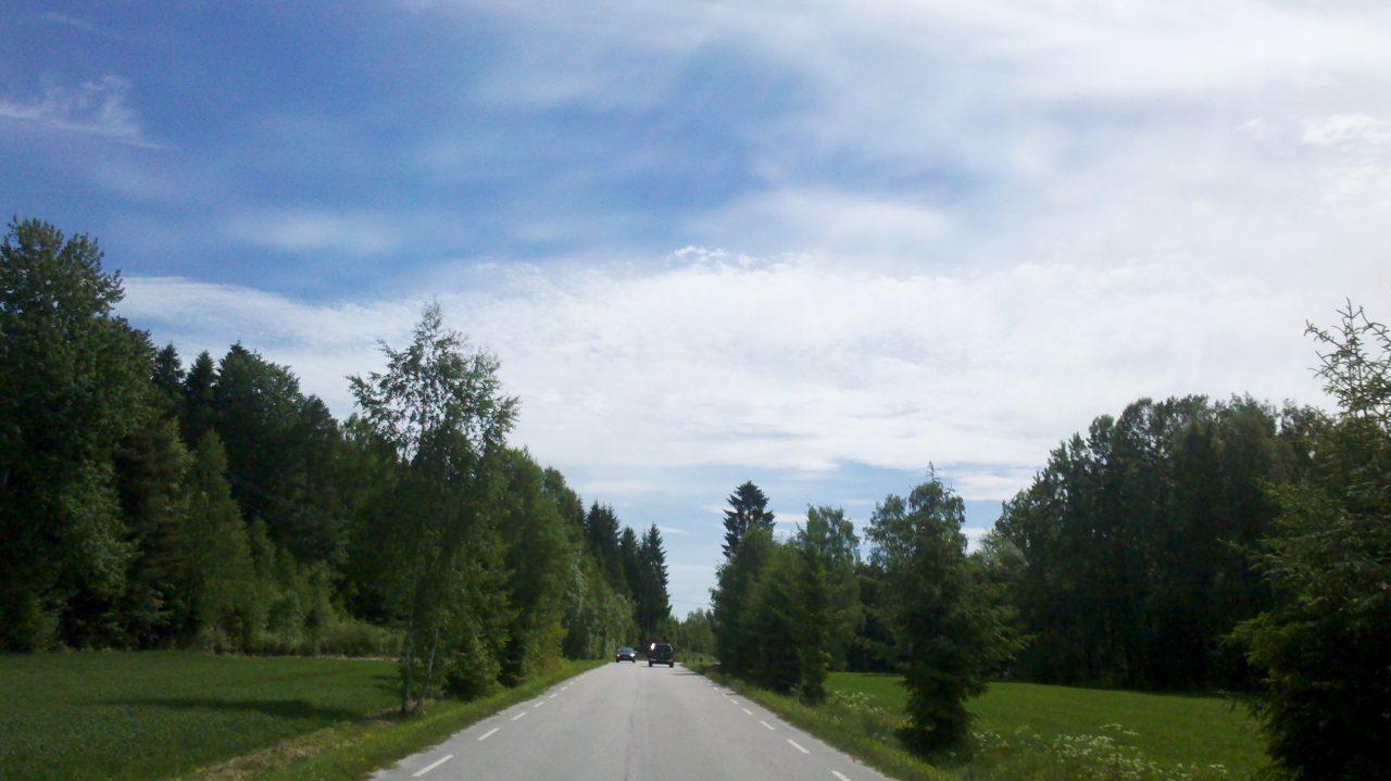 Flott vær i Østfolds skoger!